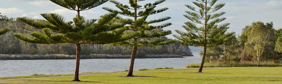 Location Shot - Tuggerah Lake